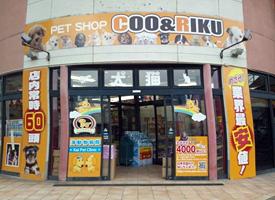店舗 クーアンドリク Coo&RIKU(クーアンドリク) 5千万脱税