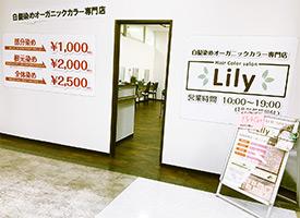 Lily 店舗イメージ